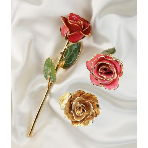 24K Gold Real Rose