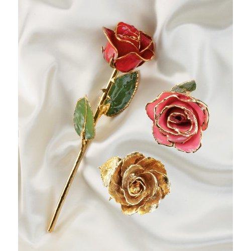 24K Gold Real Rose