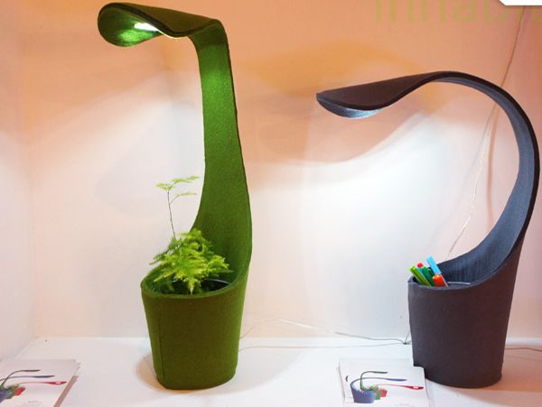 Plant Growing Dino Lamp