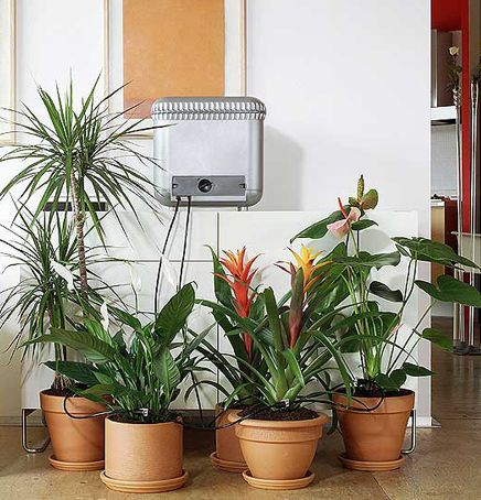 Oasis Plant Watering System