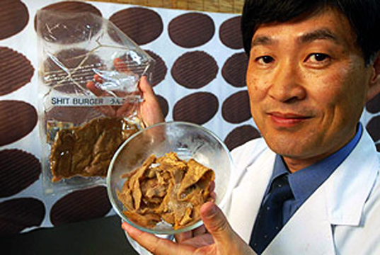 Japanese Researcher Creates Artificial Meat From Human Feces