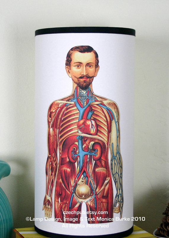 Human Muscles and Organs PAPER TABLE LAMP