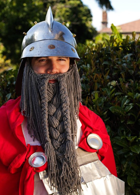 Long braided grey beard and moustache