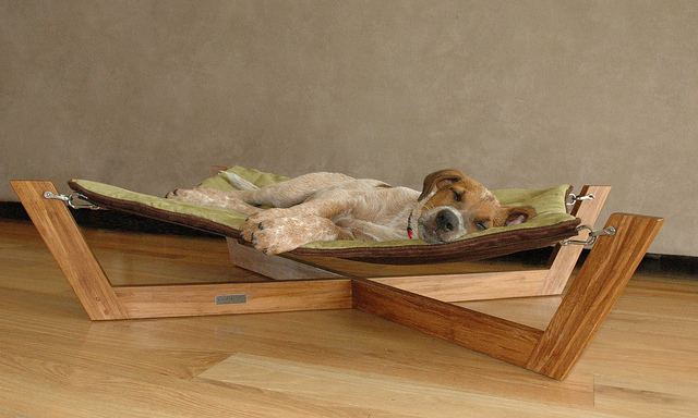 Sustainable Bamboo Dog Furniture