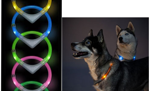 Leuchtie LED Light Collar