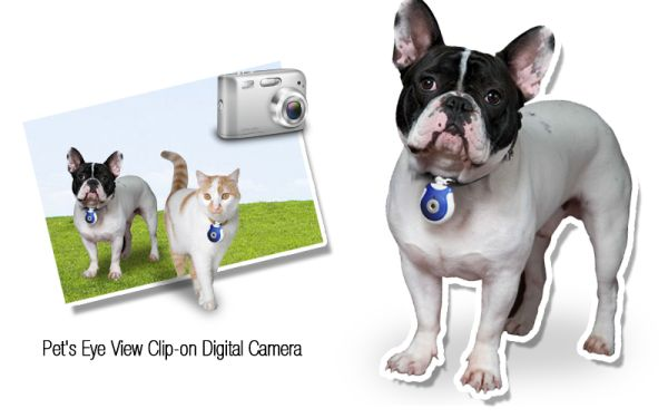 Pet's Eye View Clip-on Digital Camera