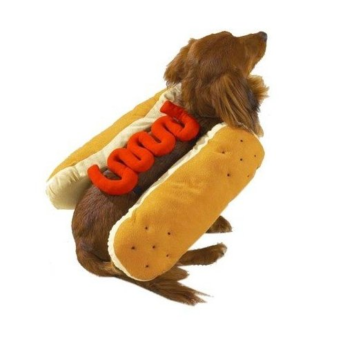 Hot Diggity Dog Costume Ketchup