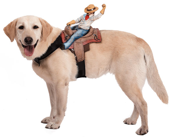 Dog Rider Doggie Costume