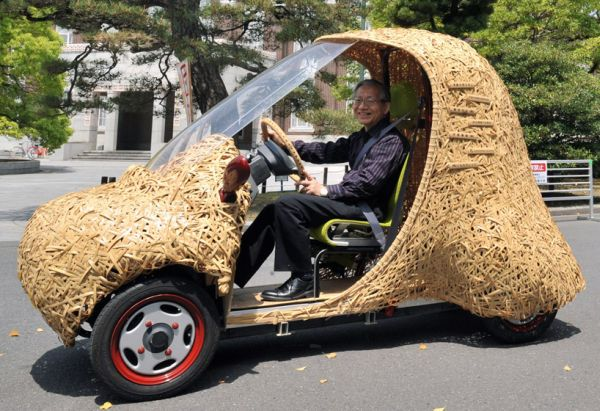 Motor vehicles to handbags to structures 'rethinking bamboo'