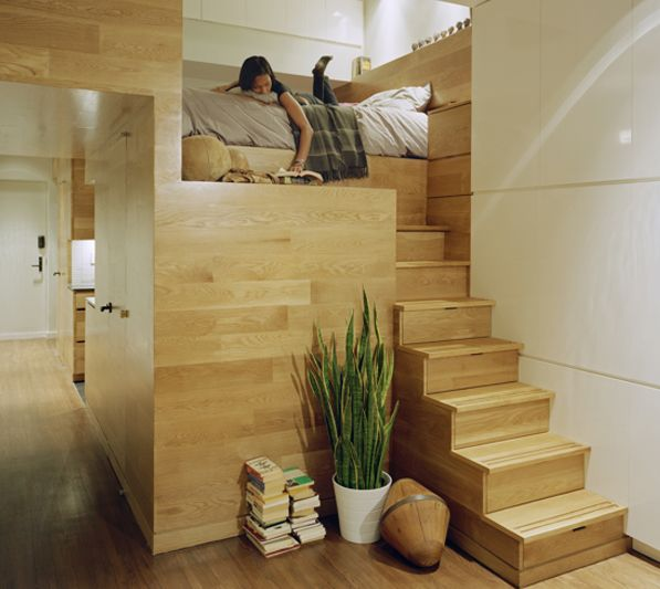 Apartment with Ultra Efficient Space