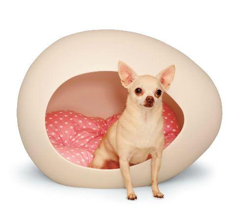 Contemporary pet house