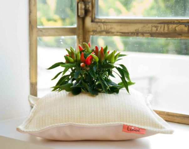 Pillow Pots