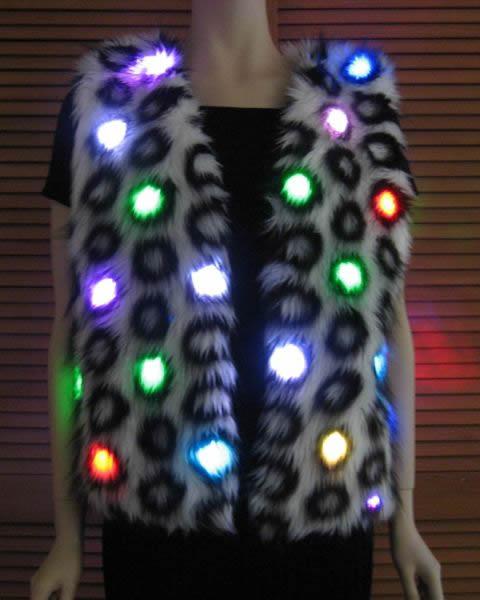 Lighted vest