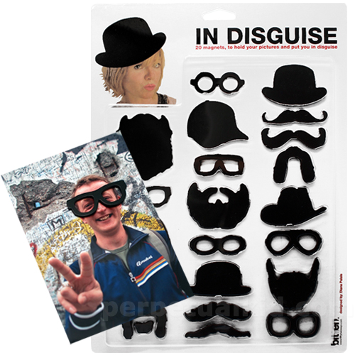IN DISGUISE MAGNETS