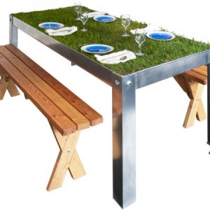 tabletop of grass