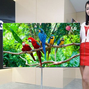 the world largest OLED TV!