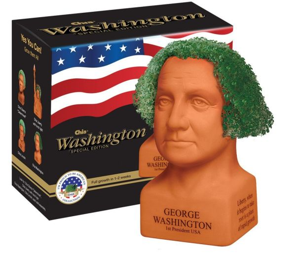 George Washington Handmade Decorative Planter