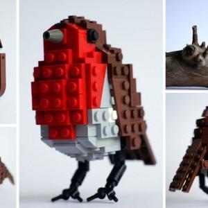 British Bird Series