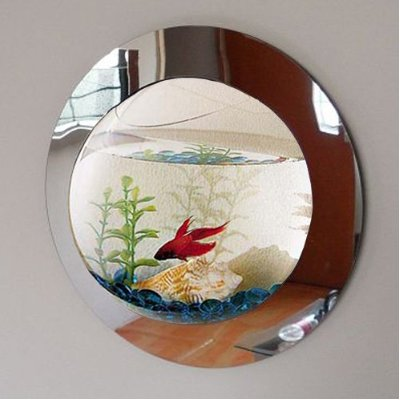 Reflection Fish Bubble