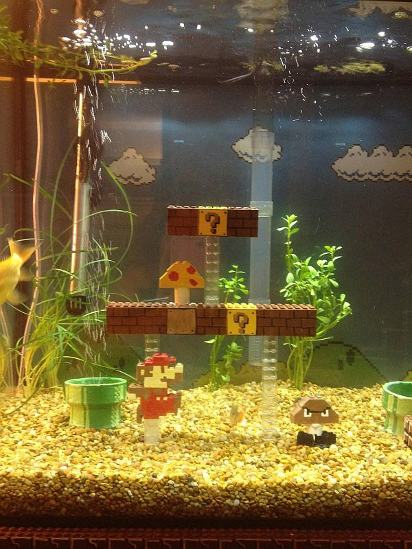 Super Mario Bros Scene Inside Fish Tank
