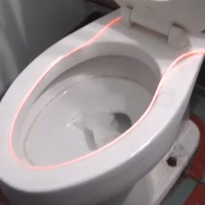 Glowing Toilet Light