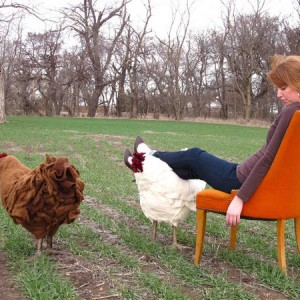 chicken footstool