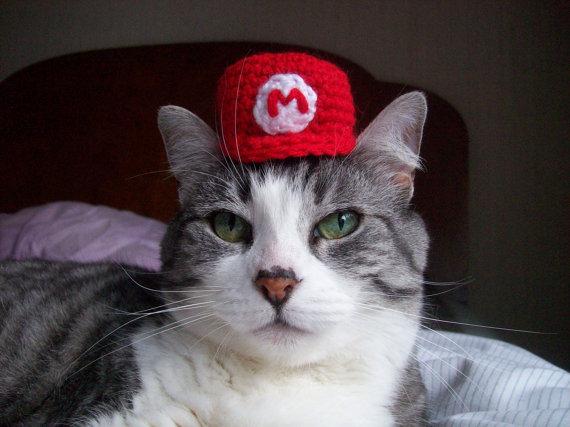Super Mario Bros Hat For A Cat