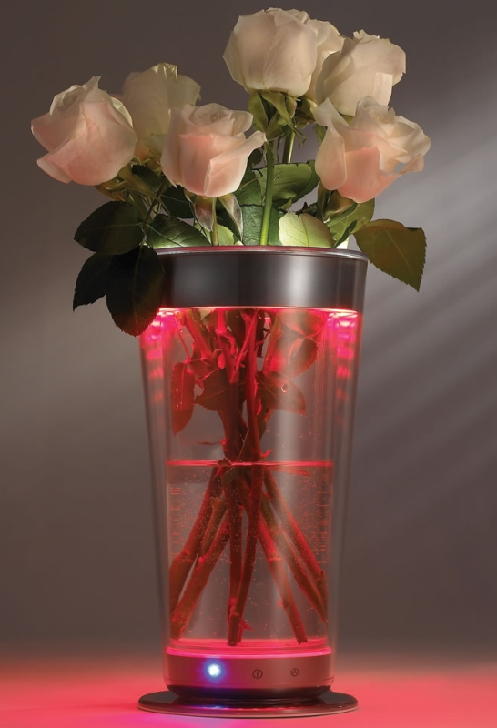 The Color Adjusting Illuminated Vase