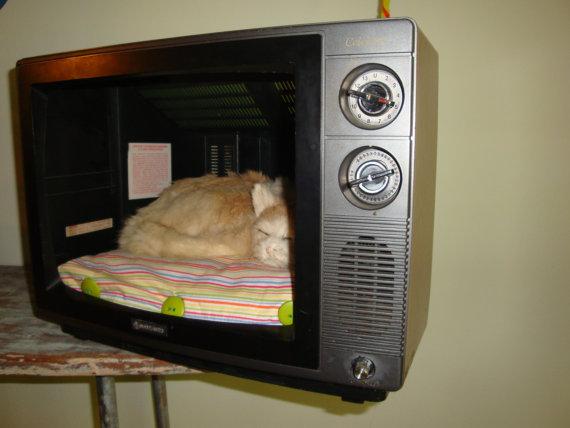 TV cat bed