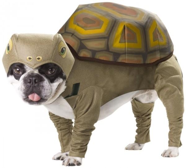 Animal Planet PET20102 Tortoise Dog Costume