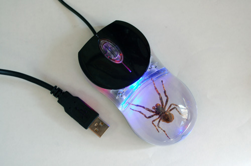 Real Bug Computer Mouse-Spider