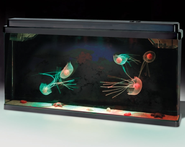 The Serene Jellyfish Aquarium