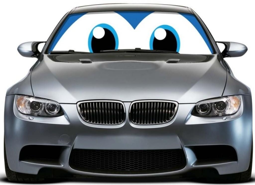 Car Sun Shade: Blue Eyes Car Sun Shade