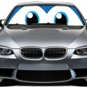 Blue Eyes Car Sun Shade