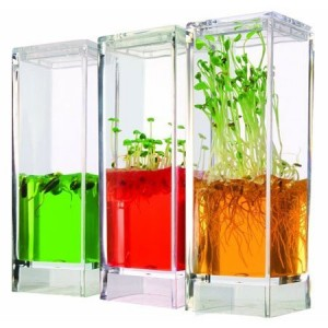 Globus Plantarium Garden Lab