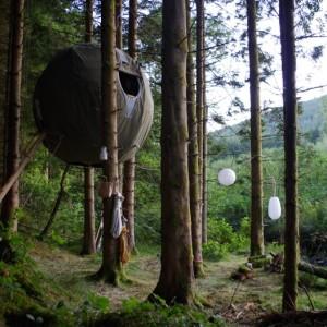 tree tents