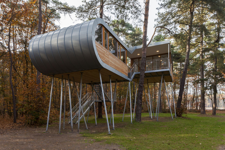 Treehouse Retreat in the Forests