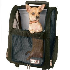 Travel Pet Carrier