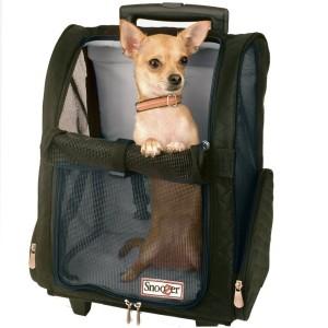 Travel Pet Carrier