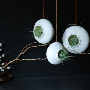 Hanging Air Planters
