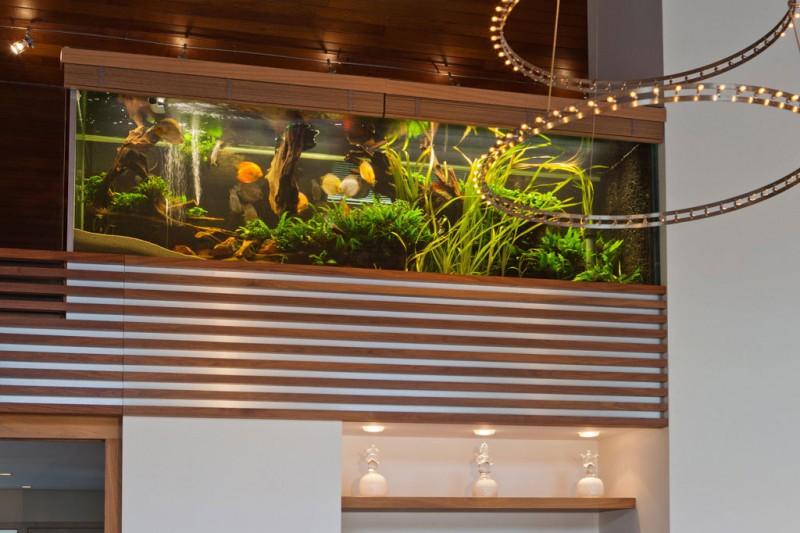 Villa-with-Aquarium-03-800x533