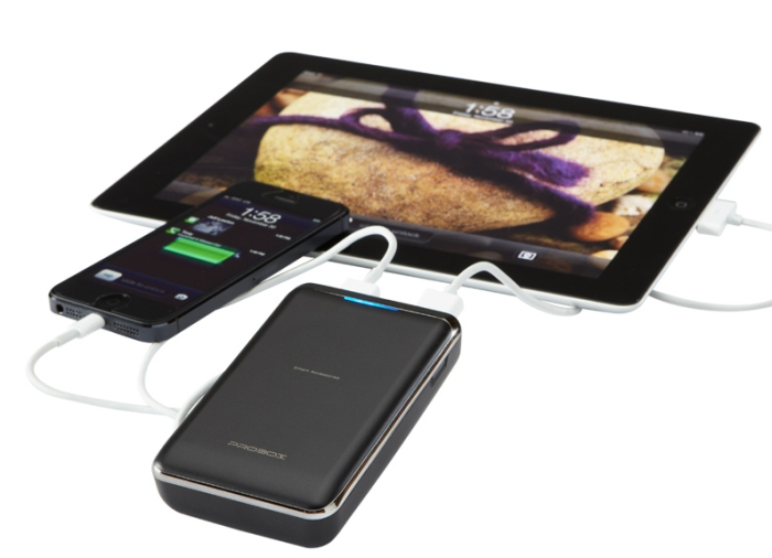 2 Device Battery Charger