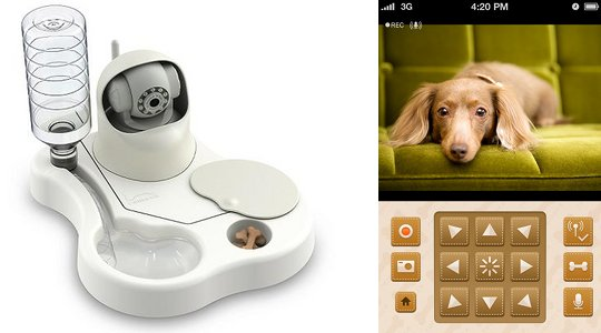 Pet meal remote monitoring system