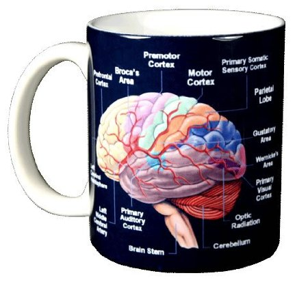 Brain 11 oz. Ceramic Coffee Mug
