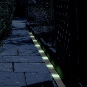 Glow in the Dark Path Markers Trademark Home