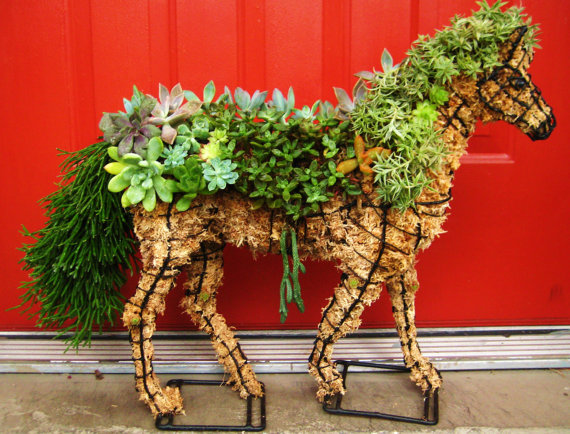 Succulent Horse Home Garden Decor