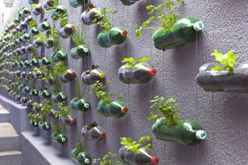 Vertical Garden From Soda Bottles