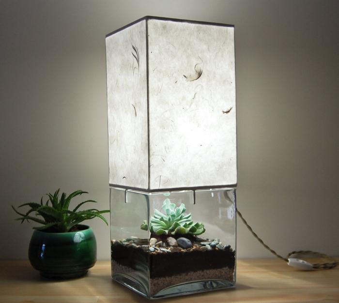 Terrarium/Display Table Lamp