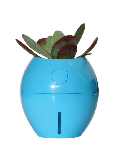 Grobal Self Watering Flower Pot