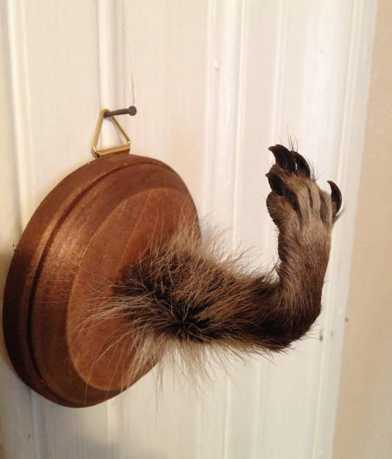 Paw Coat Hook